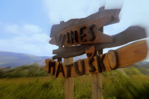 Wine Reviews – Croatia